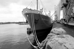 MS Bleichen am Kai des Hafenmuseums