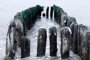 sylt nordsee strandgut by abendfarben tom koehler